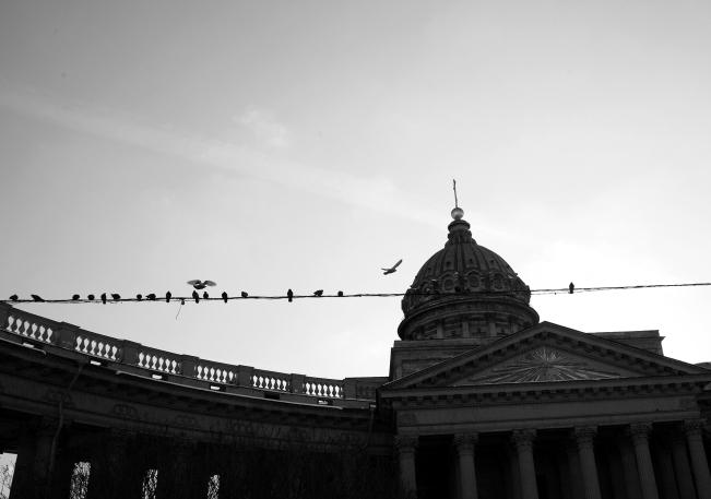 St. Petersburg (14)