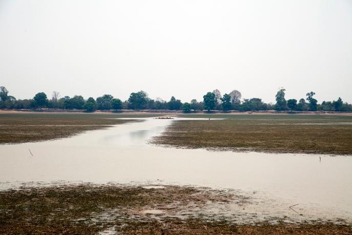 Angkor Wat (15)