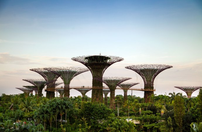 Singapore (15)