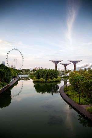 Singapore (16)