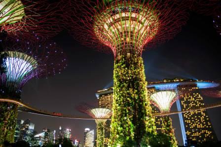 Singapore (19)