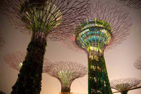 Singapore (22)