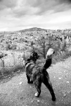 Sarajevo 10